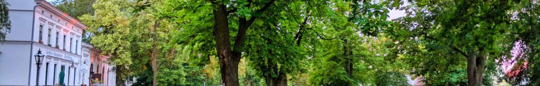 KULTUR-Dorftouren-IMG_20190614_212017