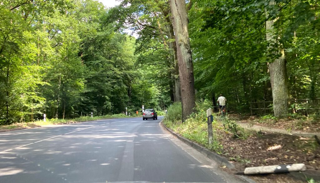 Die Heiligenseestraße mit dem parallel verlaufenden Radweg im Wald.